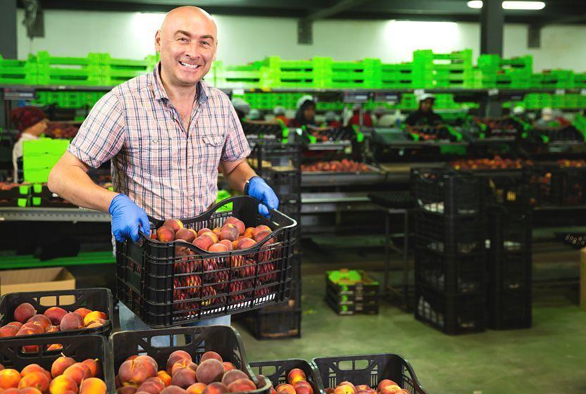 ¿Qué envases y embalajes son un éxito en la industria alimentaria?