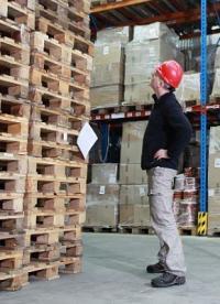 ¿El precio de la madera está subiendo? Aprovecha los palets usados